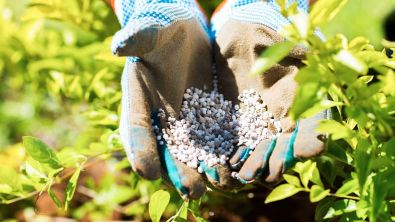 woman holding fertilizer in her hands in the garden - what is NPK?