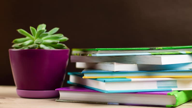 a suuculent plant in a pot sitting on a desk next to a stack of books